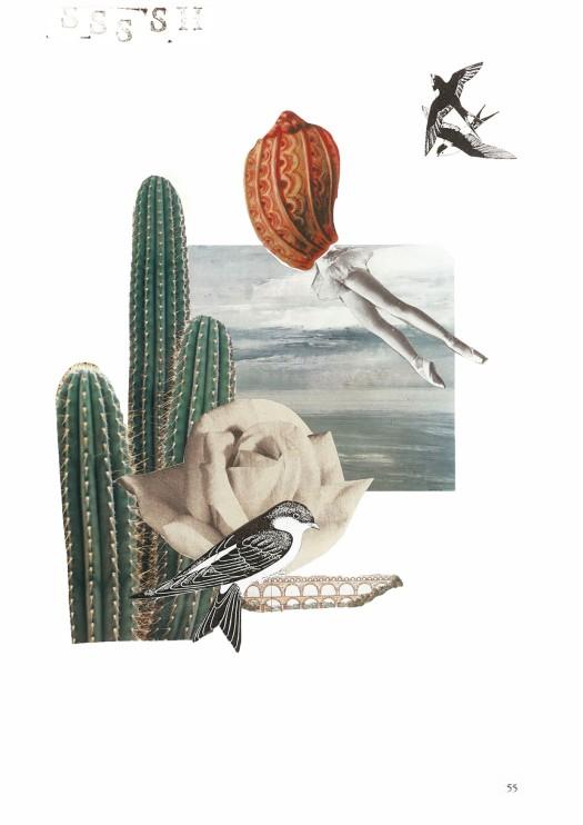 © Egg of Casuarius - Si fuese golondrina