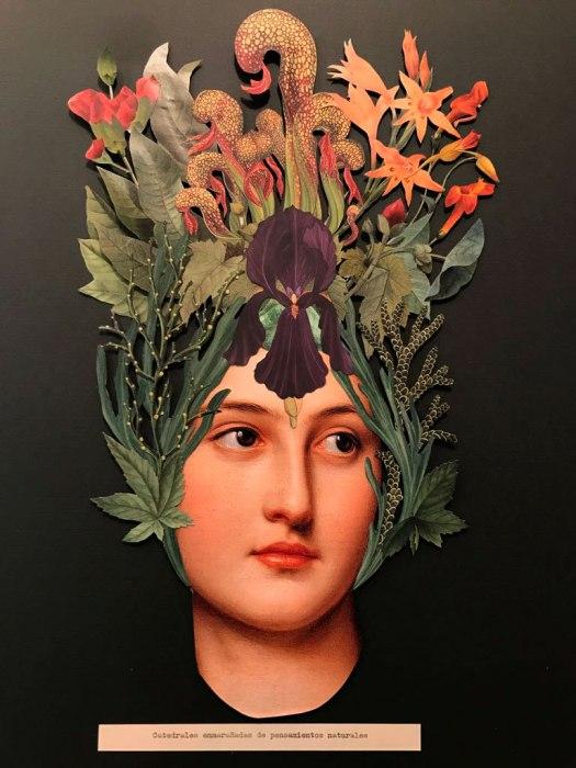 © Marta de los Pájaros - Catedrales enmarañadas de pensamientos naturales | Collage analógico| Barcelona (España)